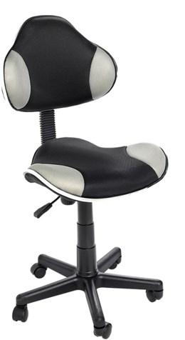 Cadeira de Escritório Anatômica  QZY-G2B - Best