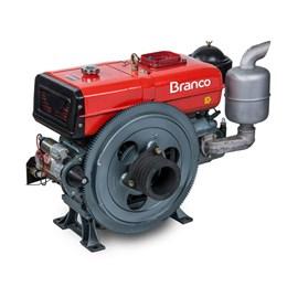 Motor a Diesel Refrigerado a Água 22,0CV 1195CC com Partida Elétrica Branco