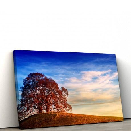 956f5093e Quadro Decorativo Árvore no Monte 100x50cm Para Sala - MaxiFerramentas